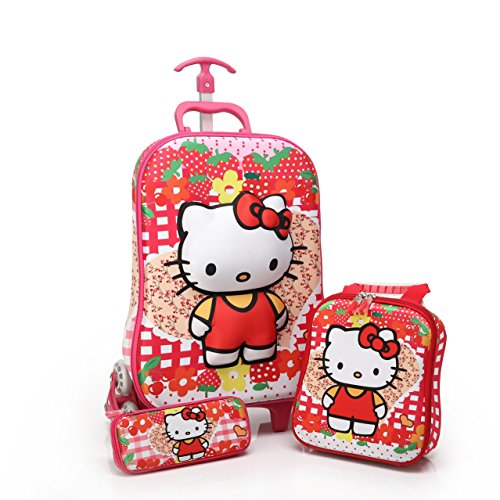 cute Hello Kitty luggage